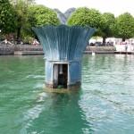 Brunnen-Tulpe